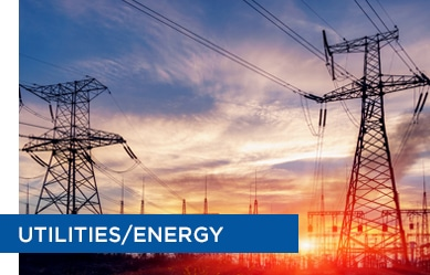 Clients from the utilities and energy industry